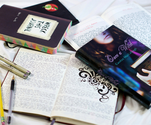 bibliophile, book, and bookworm image
