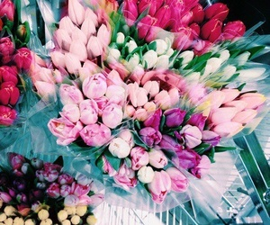 flowers, tumblr, and pink image