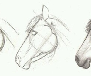 horse, draw, and drawing image
