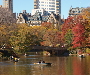 Central Park, fall, and hudson river image