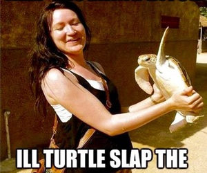 turtle, funny, and slap image