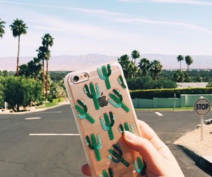 cactus, case, and nature image