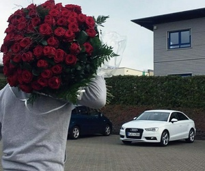 love, rose, and car image