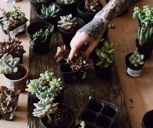 plants, tattoo, and green image