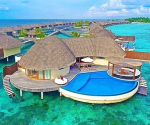 big, life, and Maldives image