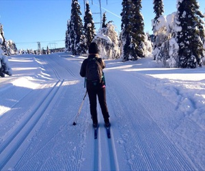 inspo, norway, and Skiing image