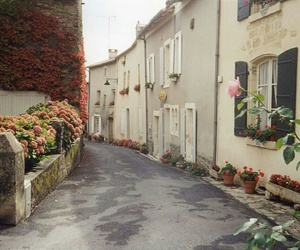 autumn, rose, and street image