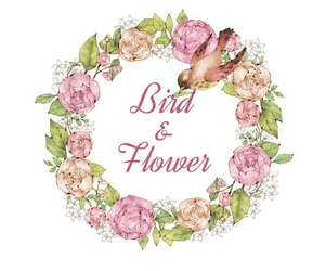 bird, flower, and wallpaper image