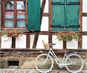 bicycle, photography, and rustic image