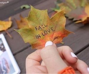 fall, autumn, and tumblr image