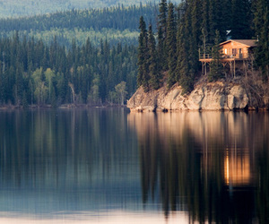 forest, lake, and log cabin image
