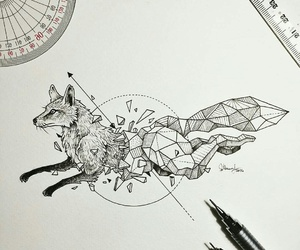 draw, drawing, and fox image