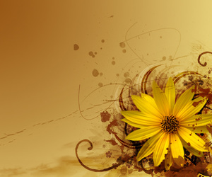 brown, yellow, and flower image
