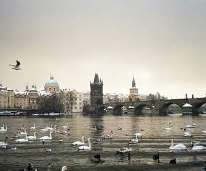 city, Olympus, and prague image