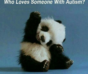 autism, panda, and quote image