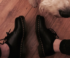 doc martens and fox terrier image