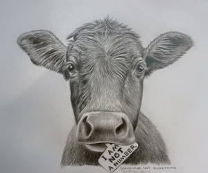 blackandwhite, cow, and drawing image