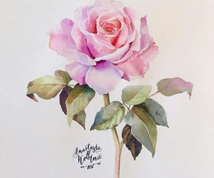 rose, leaves, and painting image