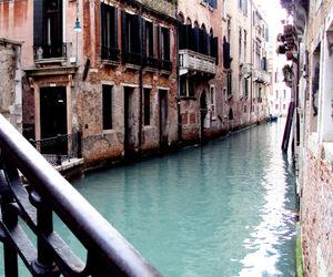 beauty, gondola, and venezia image