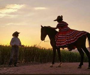 atardecer, caballos, and horses image