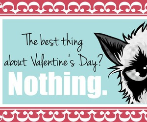 funny, valentines day, and grumpy cat image