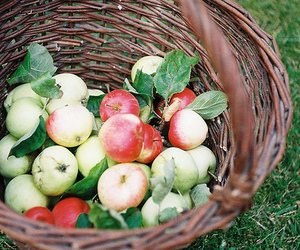 apple and fruit image
