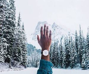 forest, snow, and hand image
