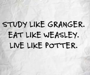 harry potter, granger, and hermione granger image