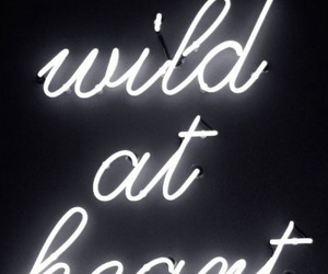 wild, heart, and quotes image