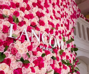 beauty, flowers, and lancome image