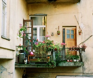 apartment, vintage., and flowers image