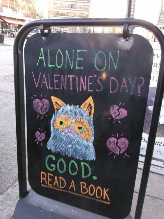 alone, book, and cat image