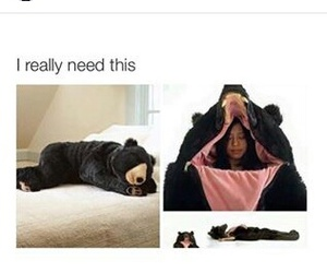 bear suit, want, and same image