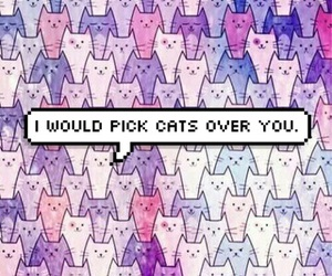 backround, cats, and colours image