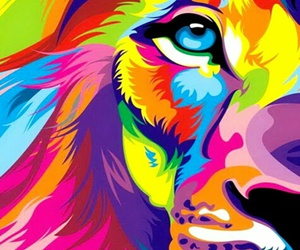 lion, wallpaper, and colors image