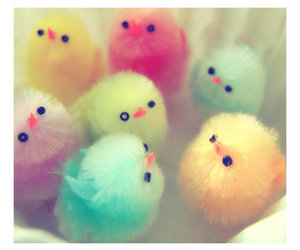 cute, Chick, and colorful image