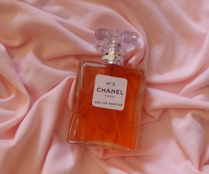 chanel, chanel no 5, and pink image