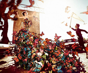 butterfly, photography, and dress image