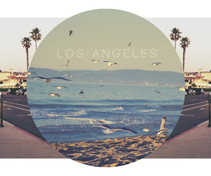 edit, los angeles, and photography image