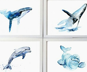 aquarelle, dolphin, and draw image