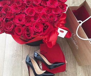 shoes, rose, and red image