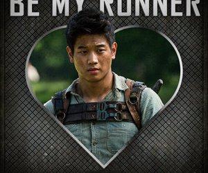 Minho, maze runner, and the maze runner image