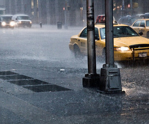 photography, rain, and taxi image