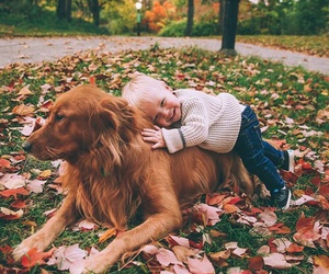 dog, cute, and kids image