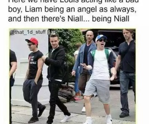lol, liam payne, and niall horan image