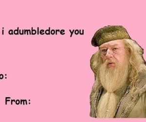 dumbledore, funny, and harry potter image