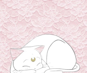 sailor moon, background, and cat image