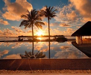 holiday, palmtrees, and sunset image
