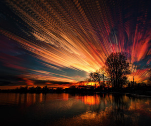 sunset, nature, and tree image