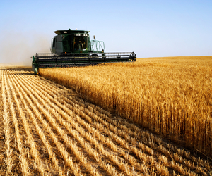 combine, John Deere, and wheat image